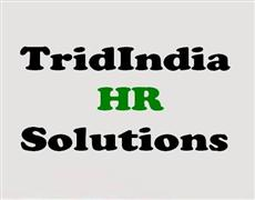 TridIndia HRSolutions