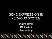 GENE EXPRESSION IN NERVOUS SYSTEM