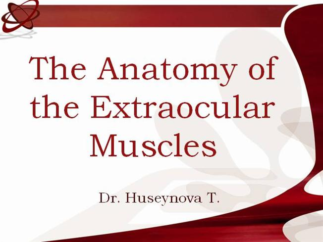 The Anatomy Of Extraocular Muscles Authorstream