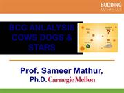 BCG Analysis (Professor Mathur)