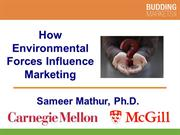 How Environmental Factors Influence Marketing