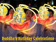 Buddha's Birthday Celebrations 2011