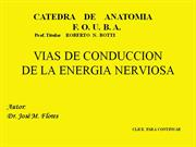 VIAS DE CONDUCCION completa
