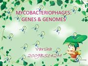 genes and genomes of mycobacteriophage
