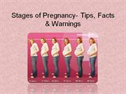 Stages of Pregnancy - Tips, Facts & Warnings