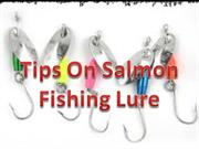 tips on salmon fishing lure