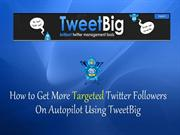 How to automatically get more twitter followers using Tweetbig