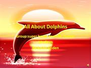 Superheroes Dolphins Baney