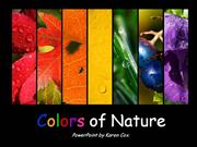 Colors of Nature  PowerPoint by KarenCox