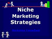 niche marketing strategies