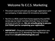 e.c.s. marketing t