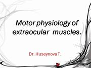 Motor physiology of extraocular muscles.