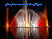 Fascination of the Night !!!!!!