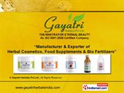 Herbal Hair Care Products By Gayatri Herbals Pvt.Ltd. Thane