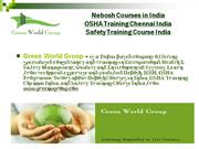 Green World Group  - Distance Learning Nebosh Courses India