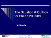 Situation and Outlook For Sheep