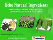 Natural Honey By Reho Natural Ingredient Coimbatore