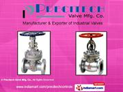 Control Valves By Precitech Valve Mfg. Co. Ahmedabad