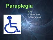 paraplegia-aaa.ppt2