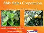 Perfumery Compound By Shiv Sales Corporation, New Delhi New Delhi