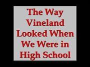 a history of vineland