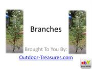 (Natural * Branches * Here) Looking For Manzanita Branches? Bonus Incl
