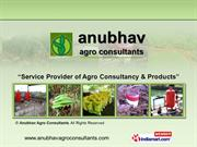 Pest Control Services By Anubhav Agro Consultants Thane
