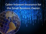 Cyber Internet Insurance for the Small Business Owner