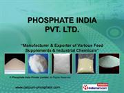 Di Sodium Phosphate By Phosphate India Private Limited Udaipur