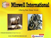 Raw Sheep Wool. By Mixwell International Mumbai