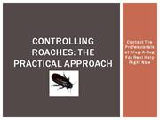 Controlling Roaches The Practical Approach
