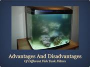 Advantages and Disadvantages Of Different Fish Tank Filters