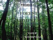FOREST AND ITS USES