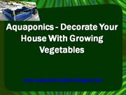 Aquaponics - Decorate Your House With Growing Vegetables