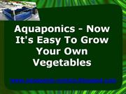 Aquaponics - Now It's Easy To Grow Your Own Vegetables