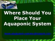 Where Should You Place Your Aquaponic System