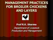 MANAGEMENT PRACTICES FOR BROILER CHICKENS AND LAYERS