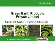 Spice Powder By Green Earth Products Pvt. Ltd New Delhi