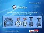 Swing Check Reflux Valve By Crawley & Ray (Founders & Engineers) Pvt.