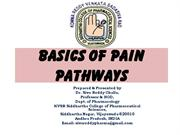 pain and pathways