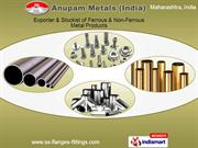 Stainless Steel Flanges By Anupam Metals (India) Mumbai