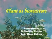 Plants as bio reactors