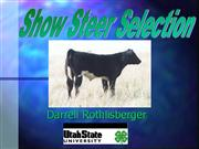 SHOW STEER SELECTION.ppt