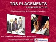 Consultancy Services By T. D. S. Placements & Services Private Limited
