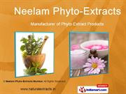 Phyto Extracts By Neelam Phyto-Extracts Mumbai Mumbai