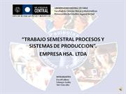 TRABAJO SEMESTRAL PROCESOS Y SISTEMAS DE PRODUCCION HSA LTDA