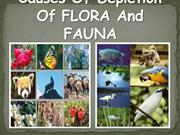 Causes and consequences of depletion of flora and fauna