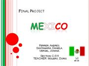 Final project Mexico level 5