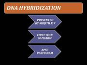 DNA HYBRIDIZATION ppt