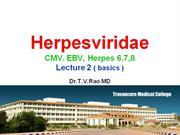 Cytomegalovirus  CMV, EBV Herpes 6,7,8